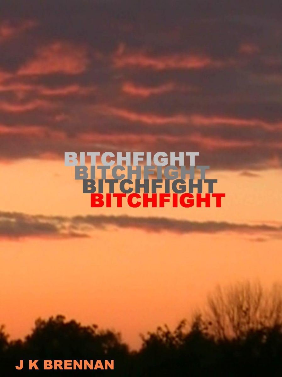 Bitchfight cover