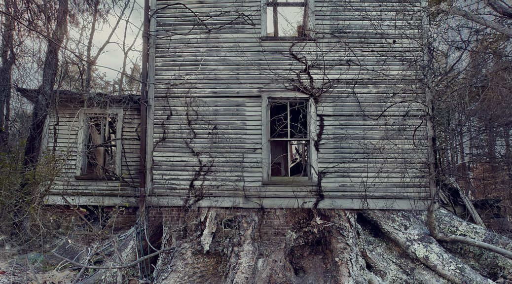 An old home taken over by roots.